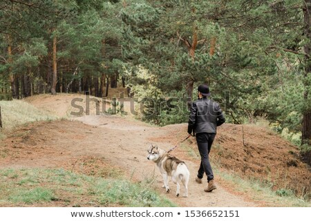 Young man holding leash of cute purebred husky dog chilling in rural environment Stock photo © pressmaster