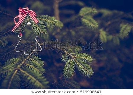 Dekoriert Weihnachtsbaum Zweig farbenreich Essen Stock foto © Alex9500