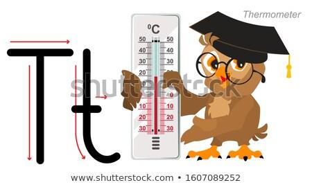 Angol ábécé levél óvoda bagoly tanár Stock fotó © orensila