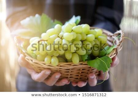 Colorful grapes in basket, white wine Stock photo © karandaev