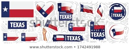 Vector establecer banderas americano Texas diferente Foto stock © butenkow