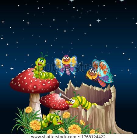 бабочки жизни саду сцена ночь иллюстрация Сток-фото © bluering