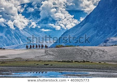 Panorama valle himalaya Foto d'archivio © dmitry_rukhlenko