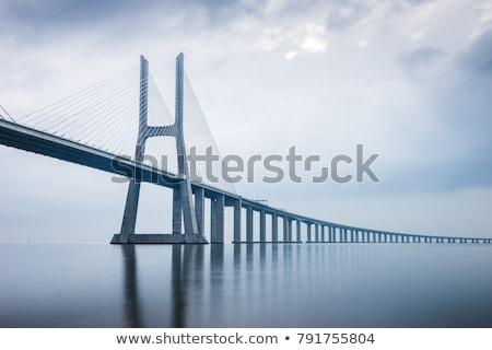 Ponte simetria reflexão rio árvore sol Foto stock © CaptureLight