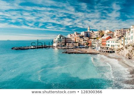 Olaszország · kicsi · falu · mediterrán · tenger · ház - stock fotó © antonio-s