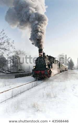 Fresh Snow on Train Tracks Stock photo © ralanscott