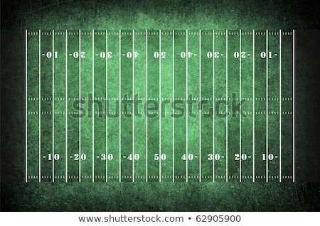 Grunge american football background Stock photo © hugolacasse