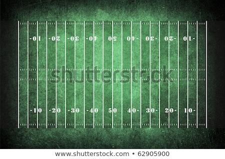 amerikaanse · voetbal · bal · veld · sport - stockfoto © hugolacasse