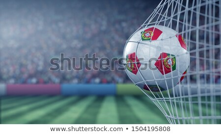 portuguese football fans reaching out stock photo © photography33
