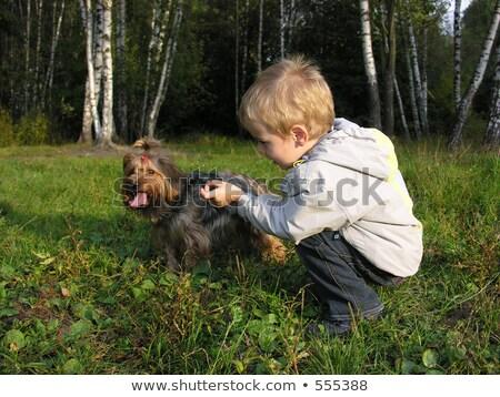 Zdjęcia stock: Dziecko · psa · zachód · słońca · drewna · Wielkanoc · baby