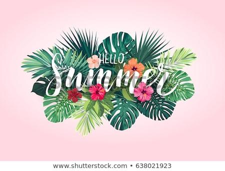 nyár · trópusi · vektor · tengerpart · égbolt · virág - stock fotó © carodi