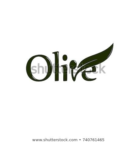 Mediterranean Olive Tree Sprout Stock photo © Kuzeytac