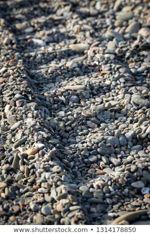 kicsi · összes · terep · jármű · tengerpart - stock fotó © acidgrey