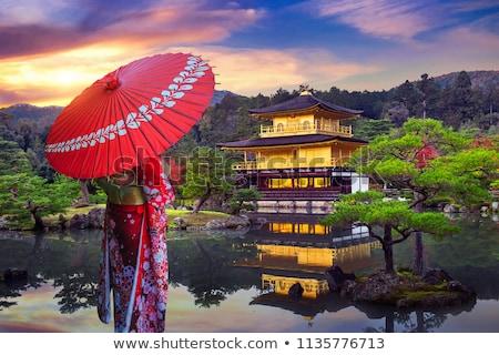 Japanese Landmarks  Stock photo © dayzeren