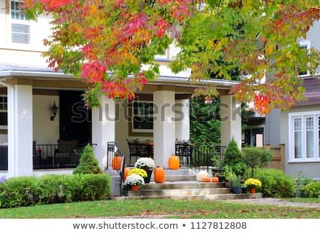 家 · 装飾された · カボチャ · 新しい · イングランド · 米国 - ストックフォト © phbcz