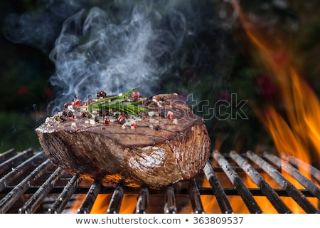 バーベキュー · 石炭 · 肉 · 食品 · 煙 · ディナー - ストックフォト © mikko