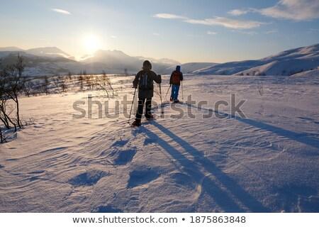 Shoe footprint over white snow. Stock photo © lunamarina