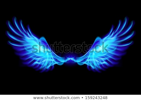 Blue fire wings. Stock photo © dvarg