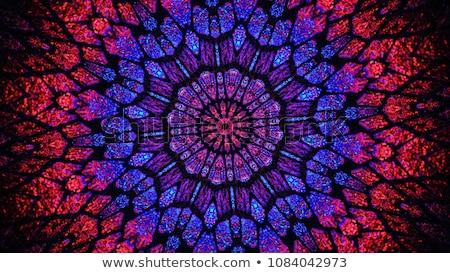 Caleidoscópio computador gerado sem costura teste padrão de flor ilustração Foto stock © tony4urban
