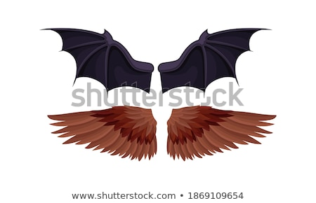 eagle falcon extended colorful spreading wings stock photo © hunterx