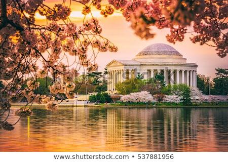 Thomas Jefferson Memorial by the flowers Stock photo © rmbarricarte