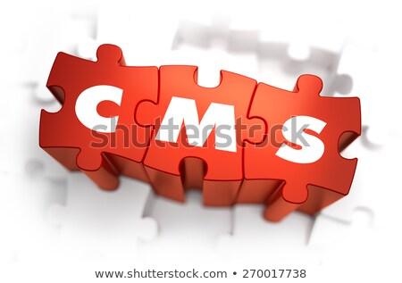 Cms fehér szó piros 3d illusztráció számítógép Stock fotó © tashatuvango