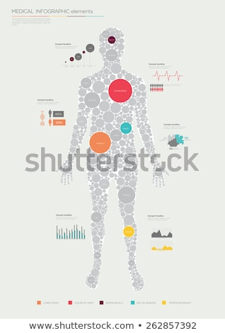 Human Body Anatomy Infographic Flat Design on Blue Background. Stock photo © jossdiim