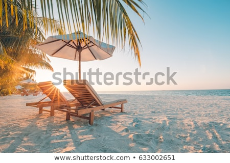 Paradise beach on an island in Philippines Stock photo © tommyandone