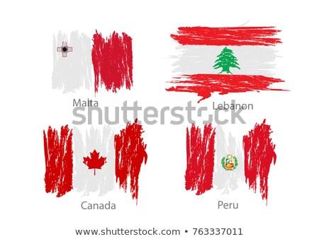 Kanada Málta zászlók puzzle izolált fehér Stock fotó © Istanbul2009