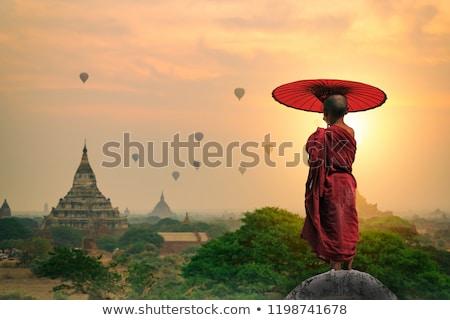 Buddhistisch halten Dach Porträt jungen Anfänger Stock foto © szefei