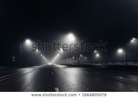 Streetlight at night Stock photo © deyangeorgiev