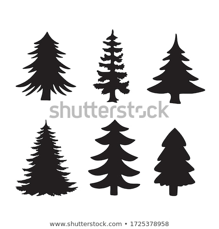 christmas fir tree eps 10 stock photo © beholdereye