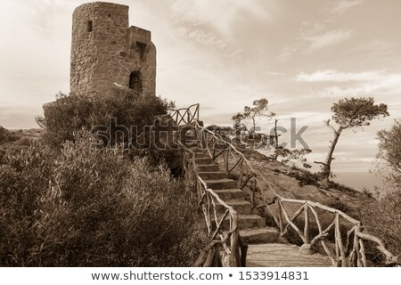 Small old tower Stock photo © Steffus