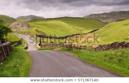 Stock fotó: Vidék · sáv · napfelkelte · Yorkshire · égbolt · fa
