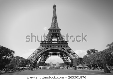 Photo stock: Tour · Eiffel · parc · Paris · France · vintage · français