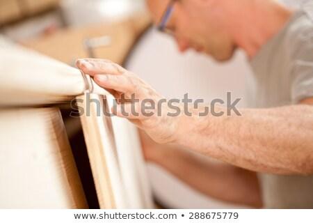 robust hand of a carpenter placing a piece Stock photo © Giulio_Fornasar
