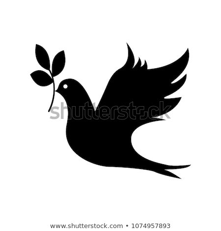 vector dove with olive branch stock photo © lilac
