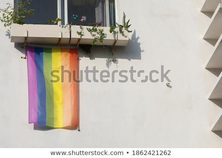 Homoszexuális szivárvány fal Izrael zászló kút Stock fotó © Bigalbaloo