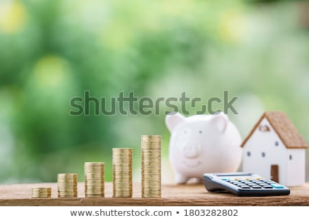 Dividend Calculator Stock photo © idesign