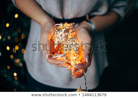 woman with fairy lights Stock photo © Massonforstock