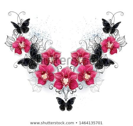 Simétrico padrão preto orquídeas borboletas rosa Foto stock © blackmoon979
