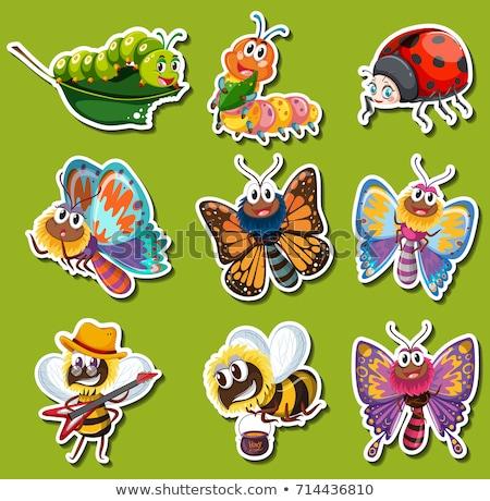 différent · insectes · volée · illustration · nature · fond - photo stock © bluering