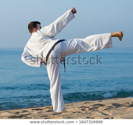Aikido demonstratie zonsondergang illustratie man sport Stockfoto © adrenalina