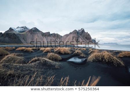 氷 ビーチ 黒 砂 冷たい ヨーロッパ ストックフォト © Kotenko