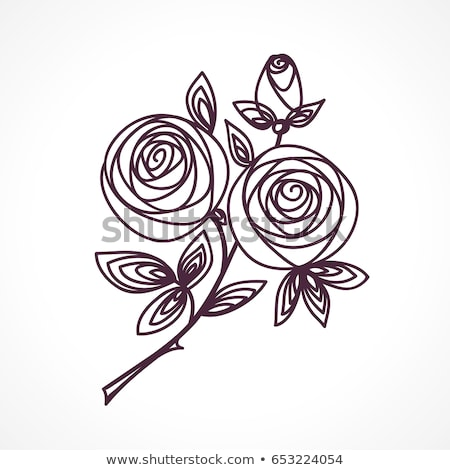 Rose. Stylized flower bouquet hand drawing. Outline icon symbol. Present for wedding, birthday invit Stock photo © ESSL