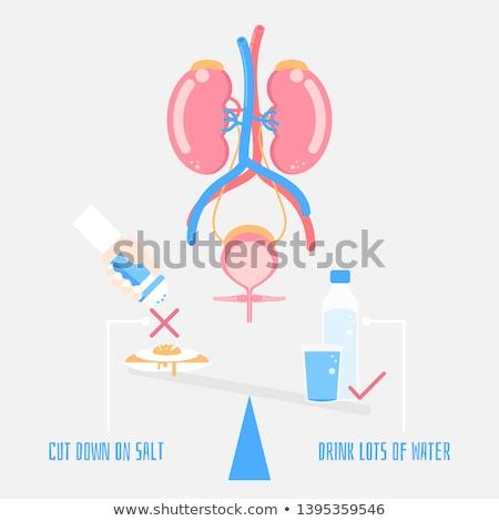 água ícone rim médico corpo fundo Foto stock © Olena