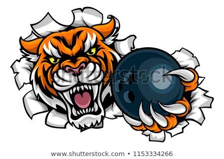 тигр Шар для боулинга сердиться животного спортивных Сток-фото © Krisdog