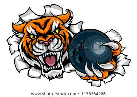 Tiger Holding Bowling Ball Breaking Background Stock photo © Krisdog