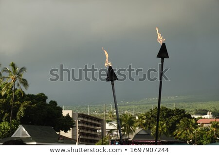 Stock fotó: Fire Torch Flame In Tropical Palm Tree Jungle