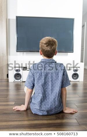 вид сзади мало мальчика сидят полу смотрят Сток-фото © Lopolo